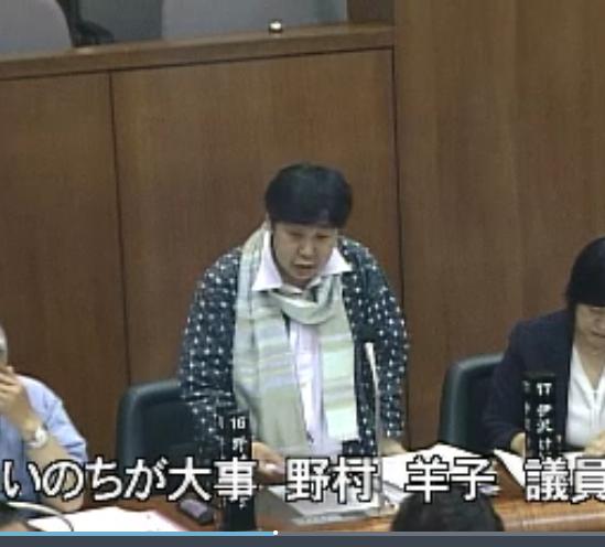 2019.6.13 本会議 即決議案質疑